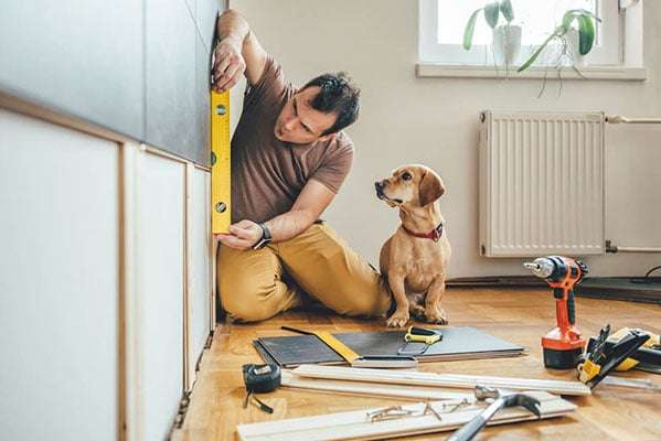 Dog watching man work on home renovations